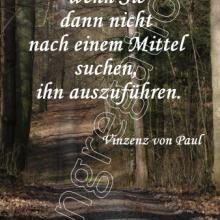 Nr. 521 / Motiv: Wald am Steinberg in Hildesheim